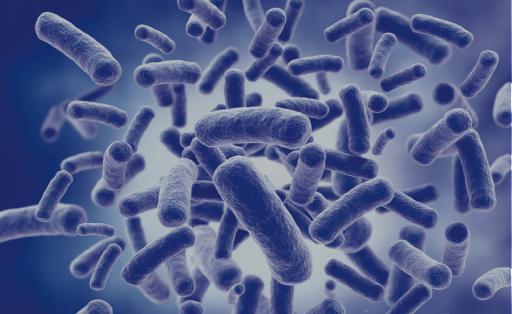 Panel discussion sul microbioma cutaneo